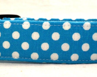 Spot On Bright White Polka Dots on Teal Blue Dog Collar Dot Spring