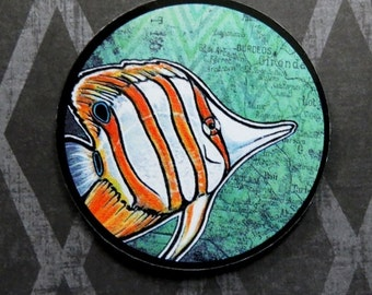 Copperband Butterflyfish  (art magnet)