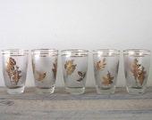 Vintage Libbey Golden Glasses Set of Five