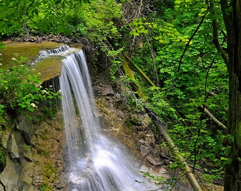 Fine Art Print of Kissing Falls, Kokowani Nature Preserve, Indiana (IDSUA131)