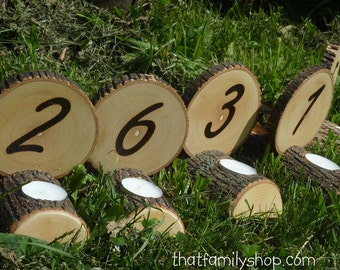 Double-Sided Tea Light Rustic Wedding Candles/ Table Number Centerpiece Decor Combo