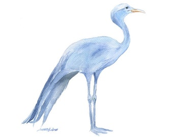 Blue Crane Watercolor Painting - 11x14 - Giclee Print - Bird Painting - South Africa