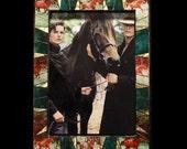 Equestrian Horse Photo Fr...