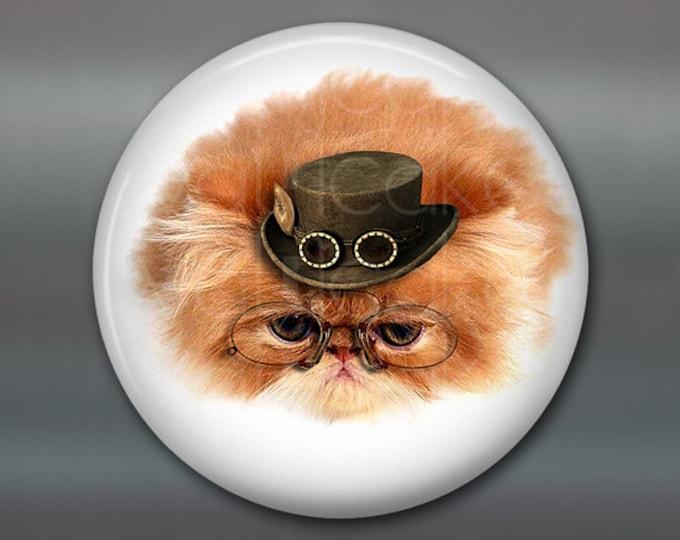 "3.5"" steampunk cat magnet, cat decor, steam punk decor, cat fridge magnet kitchen decor, large fridge magnet, housewarming gift  MA-1014"