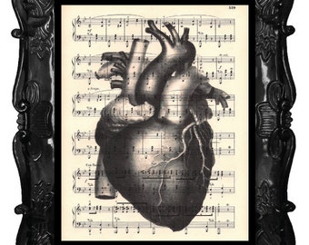 ANATOMICAL HEART art print Human Heart Illustration Anatomy Medical Science vintage heart gifts for cardiologist doctor