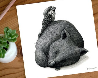 A Very Tired Wombat and 1 Tawny - ECO Limited Edition Archival Print