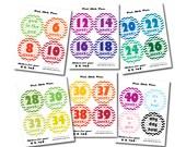 INSTANT DOWNLOAD - Printable Chevron Biweekly Multicolor Pregnancy BUMP Stickers - Every 2 weeks and Bonus Set - Photo Prop