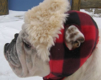 ENGLISH BULLDOG Hunter Hat, Faux furon brim, Bulldog Clothing, English Bulldog hat, reversible