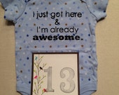 DISCOUNTED -- Nearly Perfect -- #13b, see photos -- I just got here & I'm already awesome.  -- star bodysuit, size 0-3 months