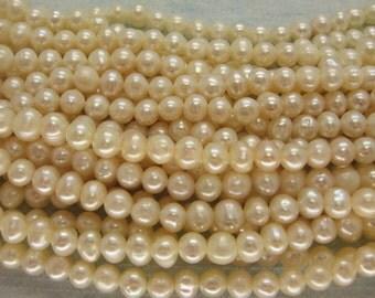 Full Strand Ivory White Freshwater Pearl Round 5mm, 15 Inch Strand