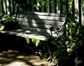 Romantic Garden Bench Botanical Photography Photo Picture