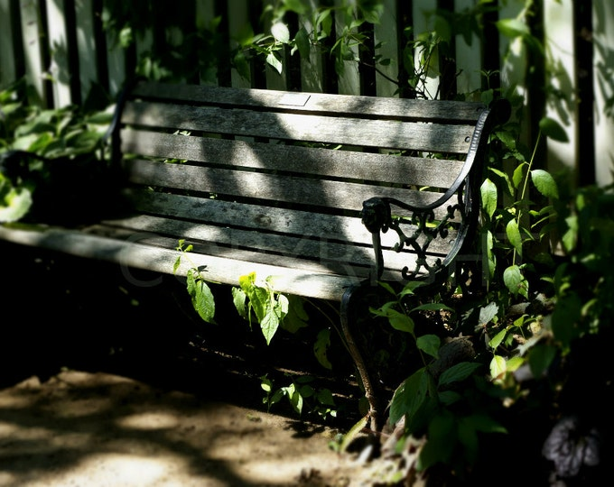 Romantic Garden Bench Botanical Photography Photo Picture, Print or Greeting Card