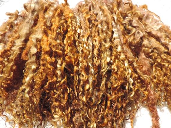 Browns de médailles d'or au Caramel marron fraise Blonde Blonde Teeswater LONG écluses 11 à 12 pouces 1 once Blyth poupée/Reborn/enraciner/poupée cheveux
