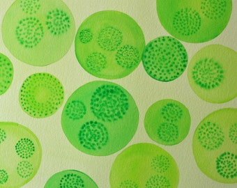 Volvox 3 - original watercolor painting - green algae