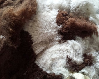Alpaca Multi Color  Fleece Spinning Fiber from Colorado Ancient Treasures