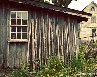 Rustic, Shed, Barn, Wood, Historic, farm, window, brown, yellow, wooden, shack, fence, green, white, nature, photograph
