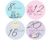 Pregnancy Stickers, Pregnancy Announcement, Weekly Stickers, Belly Stickers, Maternity Photo Prop, Belly Bump Stickers, Owls (G132-P)
