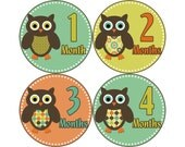 Monthly Baby Stickers, Boys First Year Photo Props, Baby Month Stickers, Baby Announcement, Monthly Photos, Baby Gift, Owls (B125)