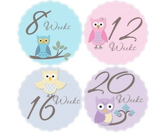 Pregnancy Reveal, Baby Announcement, Pregnancy Weekly Stickers, Pregnancy Gift, Belly Bump Stickers, Photo Prop, Owls (G132-P)