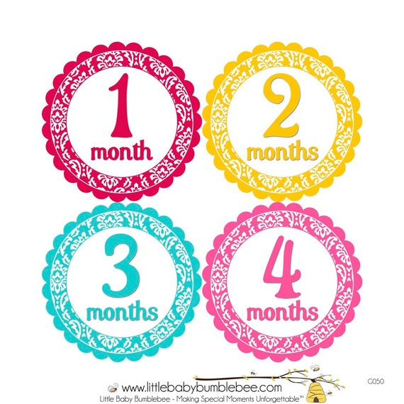Baby Month Stickers, Monthly Baby Stickers, Monthly Photo Stickers, Girls First Year Photo Props, Baby Shower Gift, Damask (G050)