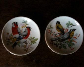 Vintage French bird birds small pretty colourful plates circa 1950's / English Shop