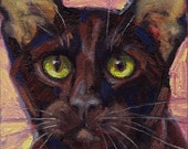 NEW LISTING Havana Brown cat small oil painting on canvas board