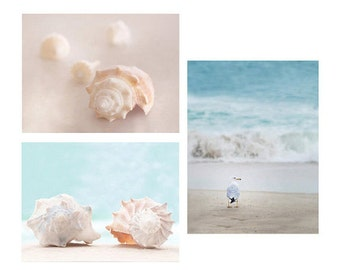 Beach Greeting Cards - Mix & Match, ocean, seagull, coast, shore, shells, seashells, sand, blue, premium paper, photography beach decor
