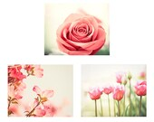 Pink, Coral Flower Set, floral photos nature nursery wall art girls room photography botanical pictures white cream salmon photographs decor