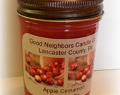 Apple Cinnamon 8 Ounce Jar SOY Candle, Red Candle, Bronze Daisy Cut Lid