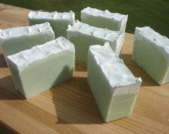 Unscented caffeine handmade soap carnivore friendly no scent geekery tallow mint green soap
