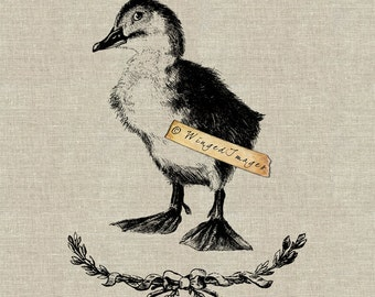 Cute Duckling Instant Download Digital Image No.113 Iron-On Transfer to Fabric (burlap, linen) Paper Prints (cards, tags)
