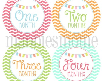 Monthly Baby Girl Stickers Baby Month Stickers, Monthly Bodysuit Sticker Bunting Pink Orange Green Blue Banners (Belle)