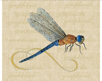 Blue winged dragonfly insect graphic printable instant download image for iron on fabric transfer burlap decoupage pillows tote card 2088