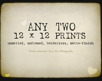 """10% OFF YOUR ORDER of any two 12 x 12"""" prints!"""