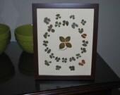 Genuine Four Leaf Clovers in Generosity Mandala