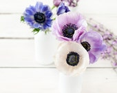 Flower still life photography - White and purple anemones in white milk bottles - Feminine romantic Spring wall art - Home decor