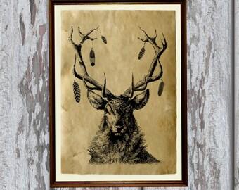 Deer poster Animal illustration Wildlife art print Antique paper AK86