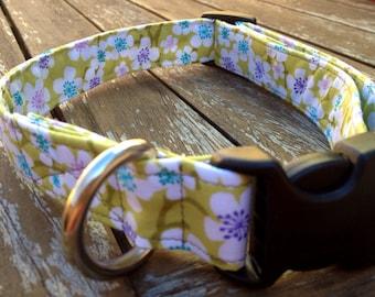 Green floral print dog collar