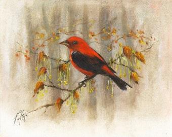 Original Oil BIRD Portrait Painting Art Artwork SCARLET TANAGER Red Tree Leaves Artist Signed