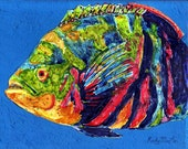 Oscar Fish,  Fine Art Giclee Print - enhanced with Brush strokes on Canvas Sheet from my Painting - ebsq Artist Ricky Martin
