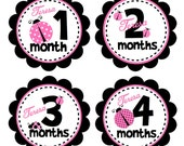 PERSONALIZED Baby Monthly Stickers with Name Added - BABY GIRL Pink Ladybug Month Stickers - Month to Month Stickers Babygrow Stickers