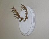 White & Gold Faux Taxidermy Elk Antler Mount