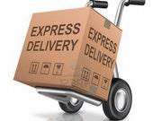Express 3 Days Delivery for USA,Canada,EU
