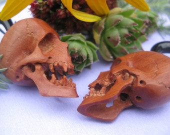 Totally bitchin' carved SKULL plugs, FAUX gauged, Free shipping and Gift Box included.