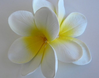 Double Plumeria Hair Clip in Color of Your Choice
