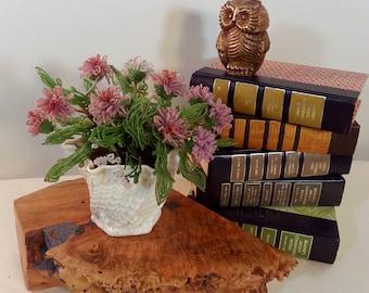 Belleek Limpet Yellow Shell Flower Pot Ireland