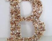"Gorgeous Seashells Monogram Letter ""B"" Wedding Monogram, Beach wedding decor, Wedding chair decor, Beach theme"