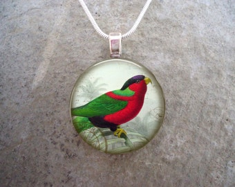 Parrot Jewelry - Glass Pendant Necklace - Victorian Bird 38 - RETIRING 2017