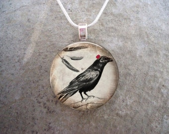 Crow Jewelry - Bird Jewellery - Glass Pendant Necklace - Raven 20