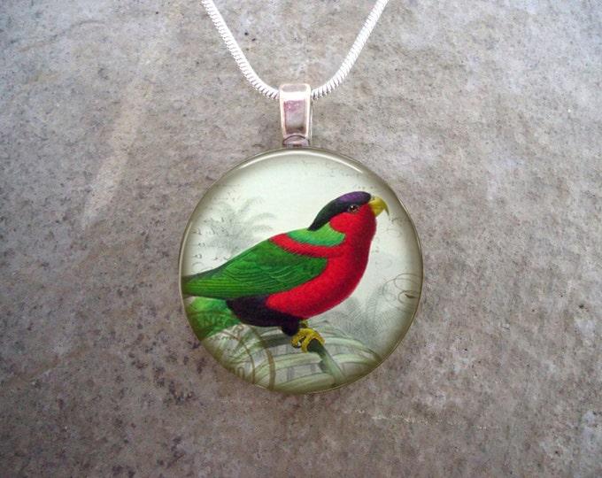 Parrot Jewelry - Glass Pendant Necklace - Victorian Bird 38 - RETIRING 2017